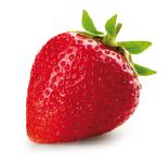 fresas-qualite-01